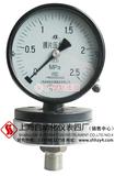 YPF-100A膜片压力表  上海AG网上真人游戏仪表四厂