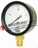 YE系列膜盒压力表 上海AG网上真人游戏仪表四厂