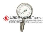 Y-100BF/ML隔膜压力表 上海AG网上真人游戏仪表四厂